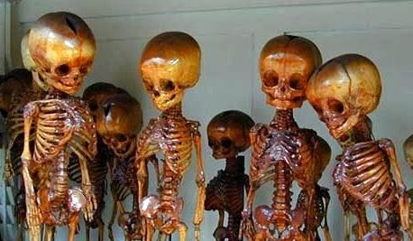 pygmy-fairy-skeletons-graveyard